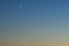 Crescent Moon Set